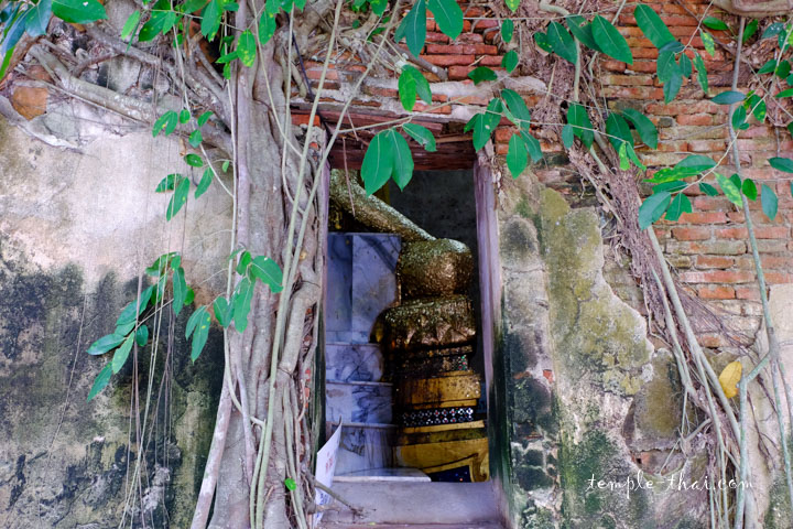 Fenêtre et racines