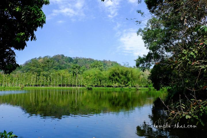 Wat Pa Si Tawon Nimit