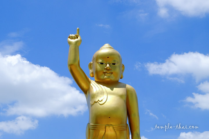 Baby Buddha