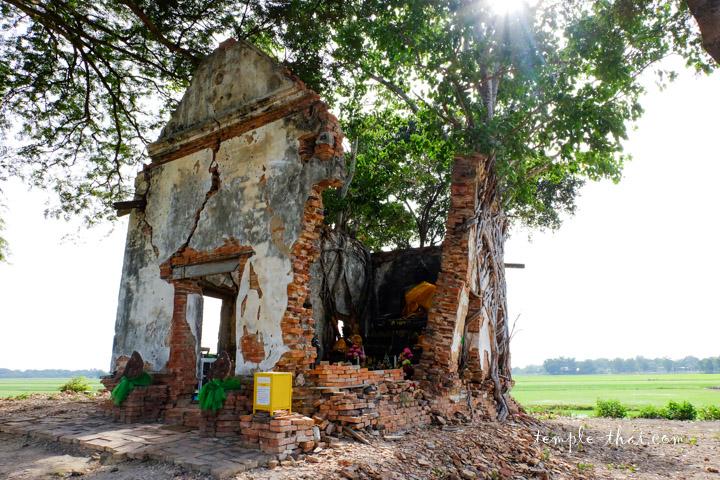 Wat Pradu (Tabong)