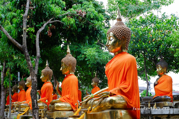 28 bouddhas
