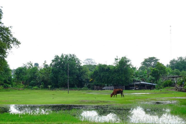 Wat Phra Si An