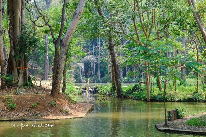 Source Thaïlande