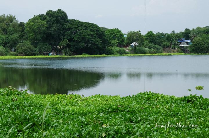 étang Thaïlande