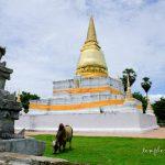 Wat Phra Borommathat Thung Yang  วัดพระบรมธาตุทุ่งยั้ง