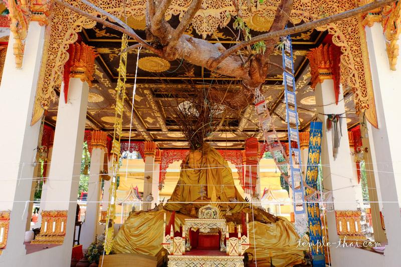 Phrathat Saen Kham Fu