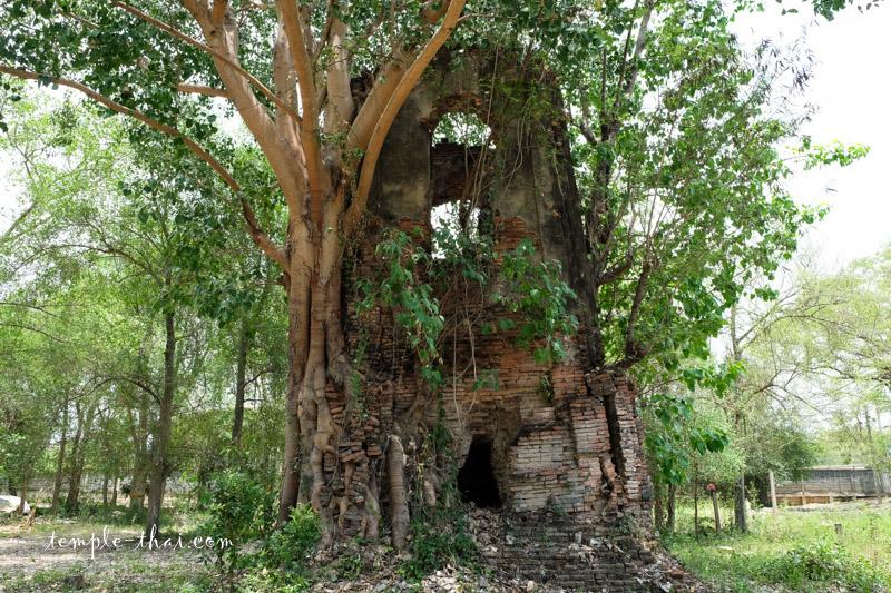 Wat Kuti Sung